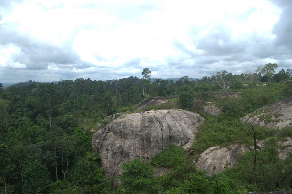 Idanre Forest Reser_Nigerian Lowland